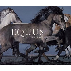 Equus by Tim Flach (Mini)