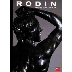 Rodin (World of Art)