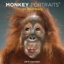 Jill Greenberg: Monkey Portraits 2013 Wall Calendar