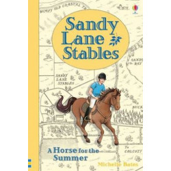 Sandy Lane Stables: A Horse For The Summer (Young Reading Level 4)