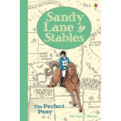 Sandy Lane Stables: The Perfect Pony (Young Reading Level 4)