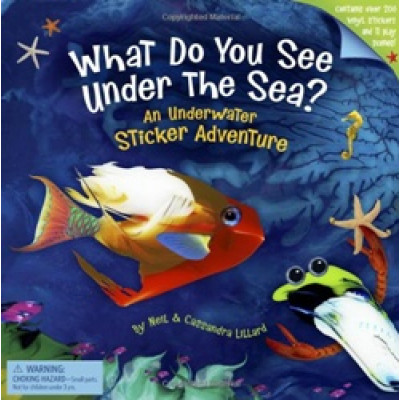 What Do You See Under The Sea?