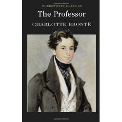 The Professor (Уценка)