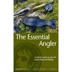 Essential Angel