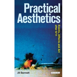 Practical Aesthetics: Events, Affects and Art After 9/11 (Уценка)