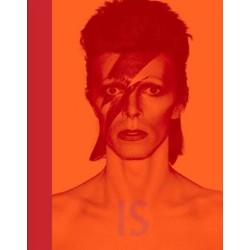 David Bowie Inside