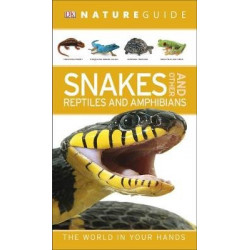 Snakes and Other Reptiles and Amphibians
